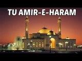 Hit Naat Collection   Tu Amir-E-Haram    Muzaffar Warsi  Naats