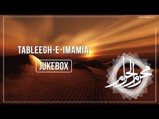 Tableegh-e-Imamia (Nazim Hussain & Afzal Mehdi) | Nohay | Muharram | Audio Jukebox