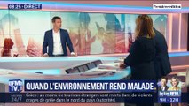 Quand l'environnement rend malade
