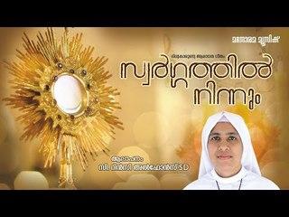 സ്വർഗത്തിൽ നിന്നും | Swargathil  Ninnum | Fr. Ebey Edassery | Sr. Rincy Alphonse SD