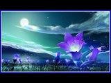 Arulimara song from Superhit album RAMZAN NILAVU