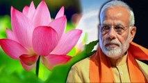 இந்தியாவின் தேசிய மலர் எது.. மத்திய அரசு அளித்த ஷாக் பதில்- வீடியோ