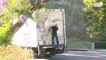 Caminhoneiro artista usa caminhão sujo como tela