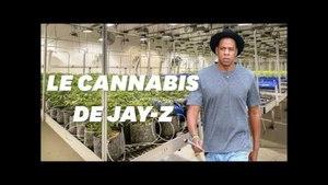 Jay-Z se lance dans le commerce de cannabis en Californie