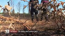 Incendies : les Landes sous haute surveillance