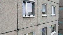 Gołębie na balkonie  Część 6  Wizyta po roku