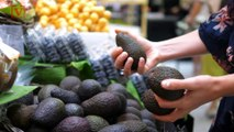 Avocado Prices Are On The Rise But The Reason Might Not Be What You Think!