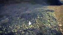 Un vol en rase-motte en wingsuit... Frisson garanti