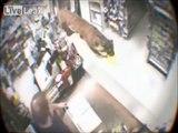 Un tigre entre dans un magasin en pleine journée
