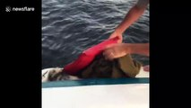 A drowning opossum is rescued by boaters