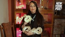 Snake healer will fix all your problems with pythons