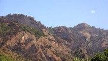 Muğla'daki orman yangını - Tarım ve Orman Bakanı Bekir Pakdemirli