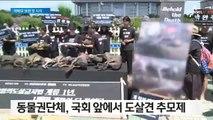 """""""개 식용 반대"""" 외친 할리우드 배우…옆에선 시식 행사"""