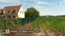 Pesticides : une maire les bannit de sa commune contre l'avis de l'État
