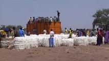 Cameroun, PRÊT DE 2,5 MILLIARDS FCFA POUR SODECOTON