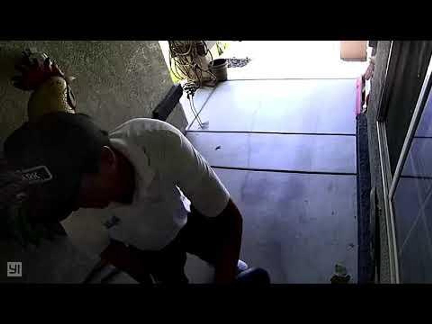 Cat Jumps at Man Riding Segway Causing Him to Crash in Front Door