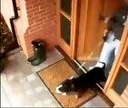 Cette chienne avait hate de se promener dehors. Regardez comment elle fait tomber sa maîtresse !