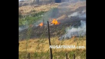 Nusaybin - Beyazsuda çıkan yangın korkuttu