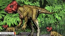 This Small Horned Chinese Dinosaur Walked On Two Feet