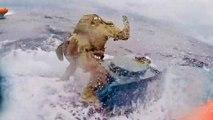 Daring Coast Guardsman Jumps Onto Moving Drug-Smuggling Submarine