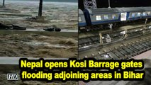 Nepal opens Kosi Barrage gates flooding adjoining areas in Bihar