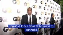 Jay Z se lance dans le business du cannabis