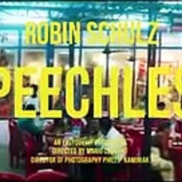 Robin shultz
