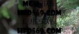 PC세븐포커  っ COD카지노 (※【- gca13。CoM -】※▷ 강원랜드 바카라사이트주소ぶ인터넷카지노사이트추천 っ  PC세븐포커