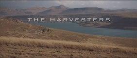 The Harvesters Movie