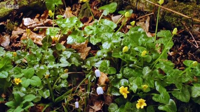 BBC Countryfile Spring Diaries Series 4 (Part 2)