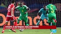 CAN-2019 : L'ALGÉRIE rejoint le Sénégal en finale ! Victoire des Fennecs 2-1 face au Nigeria