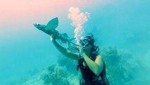 Underwater Dance Party Held In Florida Keys