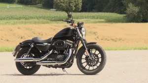 Harley-Davidson Sportster 883 Iron Review & Test Drive