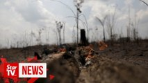 """""""Ashes to ashes:"""" Brazil troops begin tackling fires in devastated Amazon"""