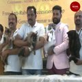 A purr-fect outing for cats in Coimbatore