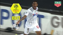 But Bongani ZUNGU (71ème) / Amiens SC - FC Nantes - (1-2) - (ASC-FCN) / 2019-20
