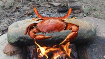 Primitive Technology: Cooking Crab on a Rock