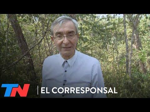 La Amazonia en llamas   NELSON EL CORRESPONSAL