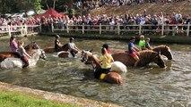Goudelin - La baignade des chevaux