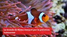 SCIENCES_FR_15072019