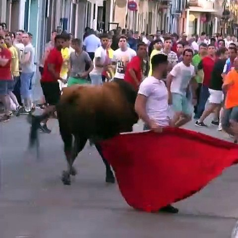 Really Dangerous Young People Play With Crazy Bulls
