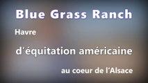 DNA - Havre d'équitation américaine au cœur de l'Alsace