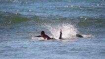 Seagull Attacks Surfer in Ocean