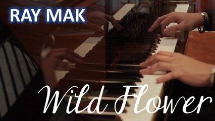 Park Hyo Shin 박효신 - Wild Flower 야생화 Piano by Ray Mak