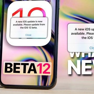 iOS 12 Beta 12- Please Update