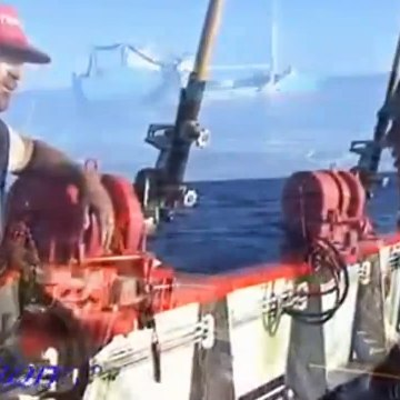 Let's see how they fish ocean tuna?