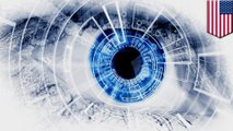 Brain implant restores partial vision to the blind