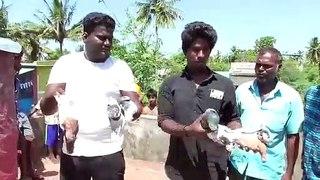 காஞ்சிபுரம் அருகே 50 புறாக்கள் சுருண்டு விழுந்து மரணம்-வீடியோ