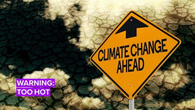 Global Warming 2050: It's Getting Hot in Here
