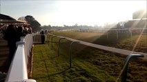 Fontwell Valentine's Day action
